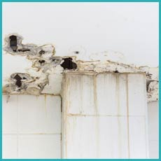 Delray Beach Water Damage Delray Beach, FL 561-330-5099